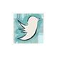 توئیتر مشهدمگ